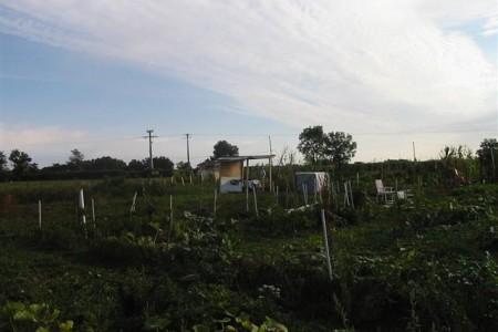 Cr ation d 39 un jardin partag pour favoriser l 39 insertion sociale 69 - Secours catholique lyon ...
