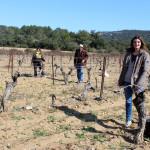 Mounir, Isabelle, Jean-Charles et Pauline forment l'équipe de Vigne de Cocagne