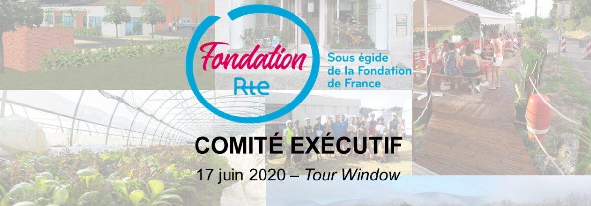 Le comité de la Fondation RTE s'est réuni mercredi 17 juin pour accorder son soutien à 12 projets. Découvrez les ici !